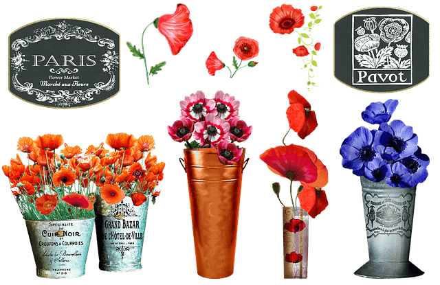 שוק הפרחים בפריז